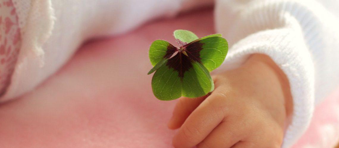 four-leaf-clover-1892660_960_720